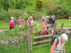 Anglo French walkers group